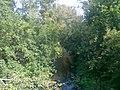 Nature in Kamensk-Uralsky. 1.jpg