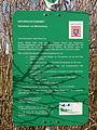 Naturschutzgebiet Salzwiesen von Münzenberg 05.JPG