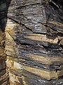 New Albany Shale (Upper Devonian; MacDonald Knob Outcrop, Bullitt County, Kentucky, USA) 5 (44988968475).jpg