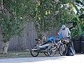 New Orleans Bike Cart.jpg