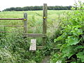 New Whittington - Looking back to Grasscroft Wood - geograph.org.uk - 862988.jpg