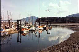 North Cowichan Skyline.jpg