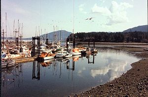 North Cowichan - Image: North Cowichan Skyline