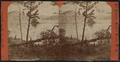 Northeast from Waltonian Isle, by Conkey, G. W. (George W.), 1837-ca. 1900.png