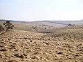 Northumbrian landscape - geograph.org.uk - 1747966.jpg