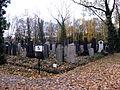 Nový židovský hřbitov (3).jpg