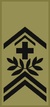 OR-8 - Adjudant sous-officier