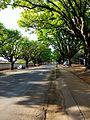 Oak Avenue Potchefstroom-005.jpg