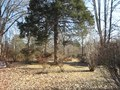 File:Oaklawn Garden Germantown TN 01.theora.ogv
