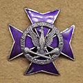 Odznaka NDWPSG.jpg