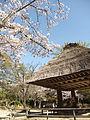 Old Japanese houses Museum Amami.JPG