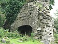 Old Ruin - geograph.org.uk - 516535.jpg