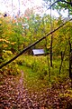On the trail (1539814502).jpg