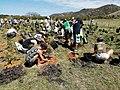 Opération de reboisement de la forêt sèche du Domaine de Déva avec l'Association Calédoclean.jpg
