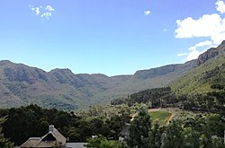 Oranjekloof valley forests - Cape Town 2.jpg
