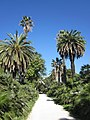 Orto Botanico, Rome - panoramio (1).jpg