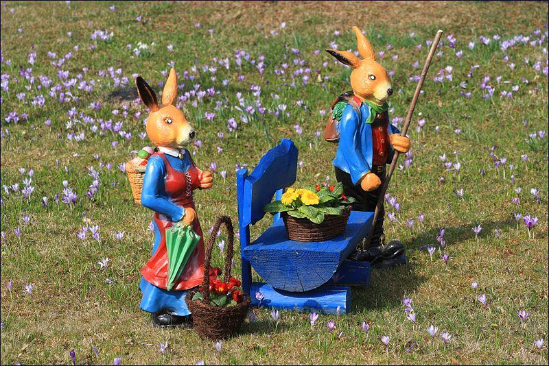 File:Osterfest auf der Krokuswiese..IMG 5627BE.jpg