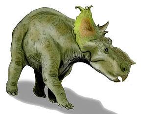 pachyrhinosaurus  alt=Description de cette imag...