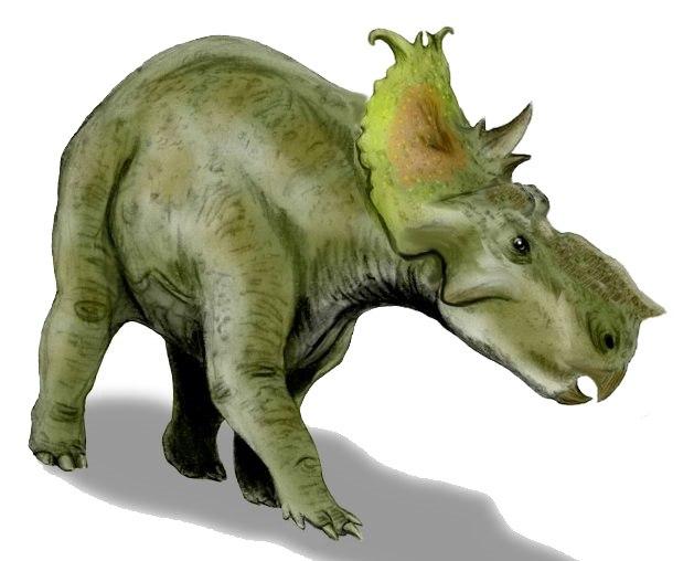 Pachyrhinosaurus BW