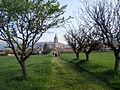 Panorámica del Monasterio de El Paular..jpg