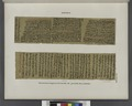 Papyrus. Hieratischer Papyrus. No. I, Lin. 235-311.(jetzt im K. Museum zu Berlin.) (NYPL b14291191-44336).tiff