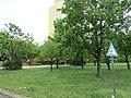 Park und Grünanlage in Alt-Hohausen, 2020.05-16 ama fec (9).JPG