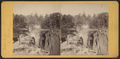 Passaic Falls, Paterson, N.J, from Robert N. Dennis collection of stereoscopic views 2.png