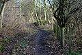 Pathway - geograph.org.uk - 666315.jpg
