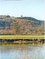 Paxton's Tower seen from across the River Tywi - geograph.org.uk - 120156.jpg