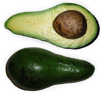 Magnoliids - The avocado has been cultivated in the Americas for thousands of years.