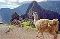 Peru-238 (2218705428).jpg