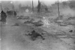 Photo-TokyoAirRaids-1945-3-10-Charred Remains.png