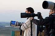 Photojournalists in 2008-2009 Israel-Gaza conflict