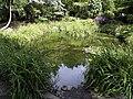 Pickering Park Ornamental Pond - geograph.org.uk - 865769.jpg