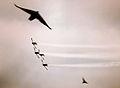 PikiWiki Israel 37250 Israeli Aerial Demonstration.jpg