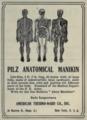 "Pilz Anatomical Manikin dical directory"", 1906 advert).png"