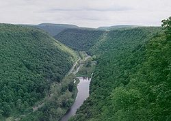 Pine Creek Gorge Panorama Crop.JPG
