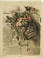 Pink Flowers in Hanging Vase by Boston Public Library.jpg