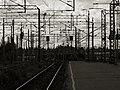 Platform 3.jpg