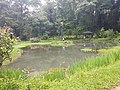 Pond View 20170706 160259.jpg