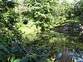Pond in park.jpg