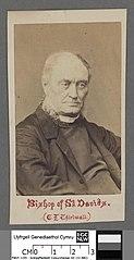 Bishop of St. David's C. N. Thirlwall
