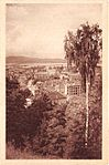 Postcard of Ljubljana view (13).jpg