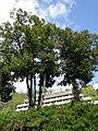 Postojnska Jama (Postojna Cave) - panoramio (56).jpg