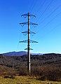 Power lines in Sochi.jpg