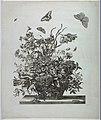 Print, Plate 10, from set of Flowers in a Basket, ca. 1680 (CH 18352803-2).jpg