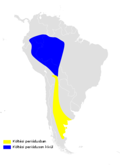 Progne elegans distribution map.png