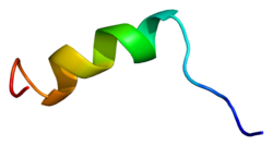 Protein SCN3A PDB 1byy.png