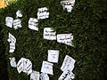 "Protesters left signs, many reading ""leave"" or ""the people demand the removal of the regime"" on the - Flickr - Al Jazeera English.jpg"