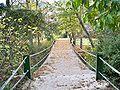 Puente alejos.JPG
